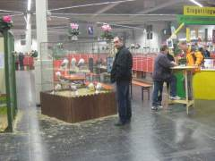 Dortmund-2009-019