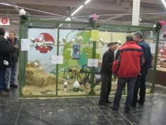 Dortmund-2009-023